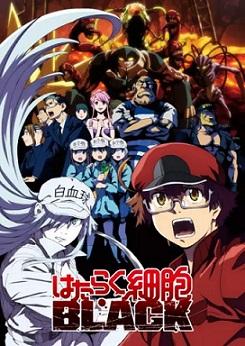 Hataraku Saibou BLACK en streaming