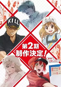 Hataraku Saibou S2 en streaming